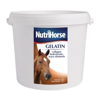 NutriHorse Gelatin - Gel
